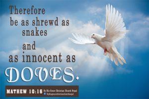 Mathew 10:16